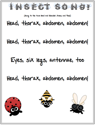 Jolly Phonics Tricky Word List also Printable Thanksgiving Matching ...
