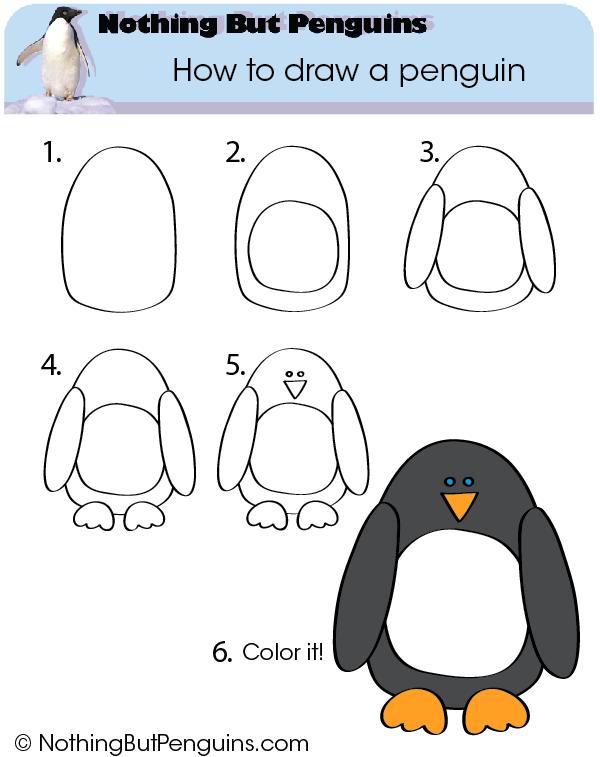 Emperor Penguin How To Draw Httpwwwtheclassroomcreativecom2013