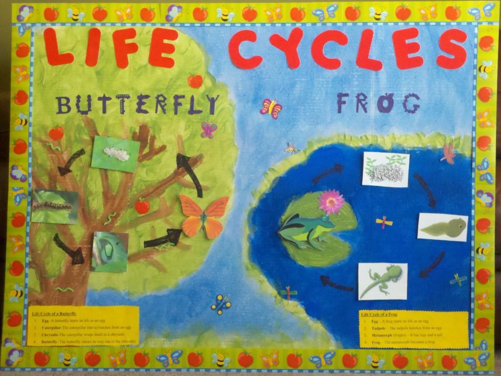 Classroom Ideas Bulletin Boards : Classroom bulletin board ideas just b use