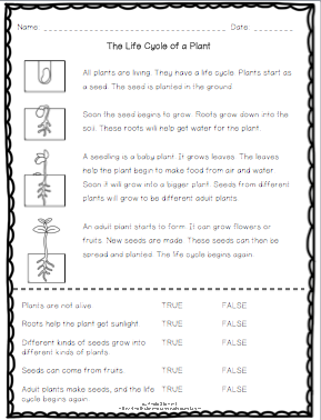 Plant sequence chart from Mrs. Kilburn's Kiddos