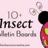 insect-blletin-boards-spring-landybug-spider-bee-butterfly-dragonfly