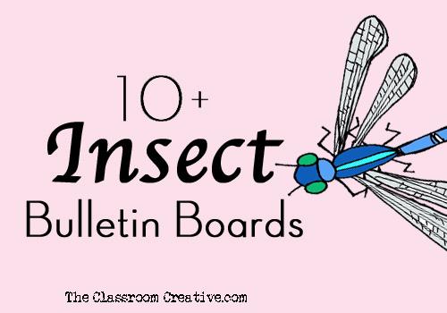 Insect Bulletin Board Ideas