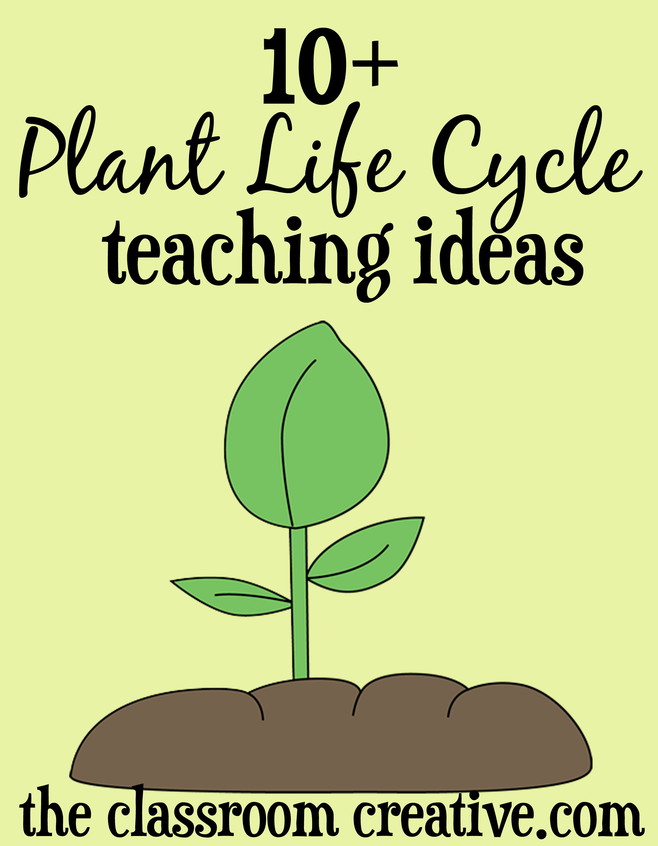 worksheet Life Cycle Of A Plant Worksheet plant life cycle unit ideas and activities crafts resources