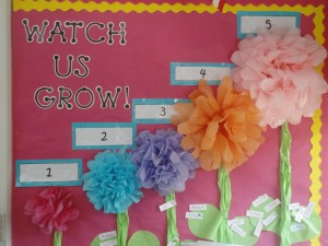 tissue paper flower craft bulletin board