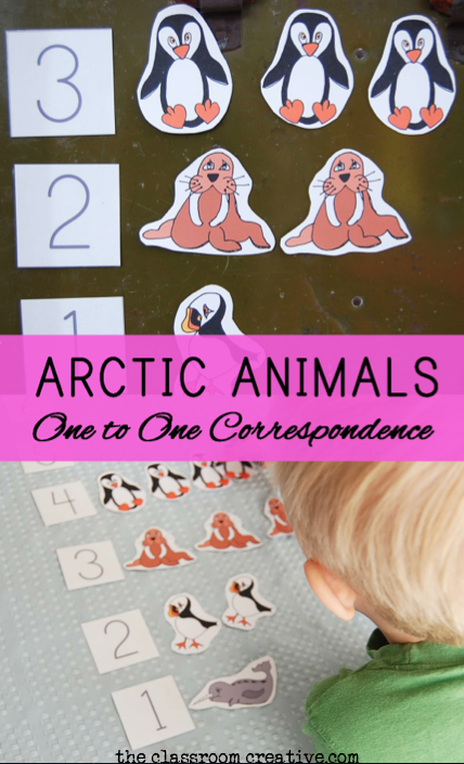 Arctic Animal Math Center: One to One Correspondence