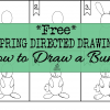 Free Spring Directed Drawing: The Step by Step Process of Drawing a Bunny
