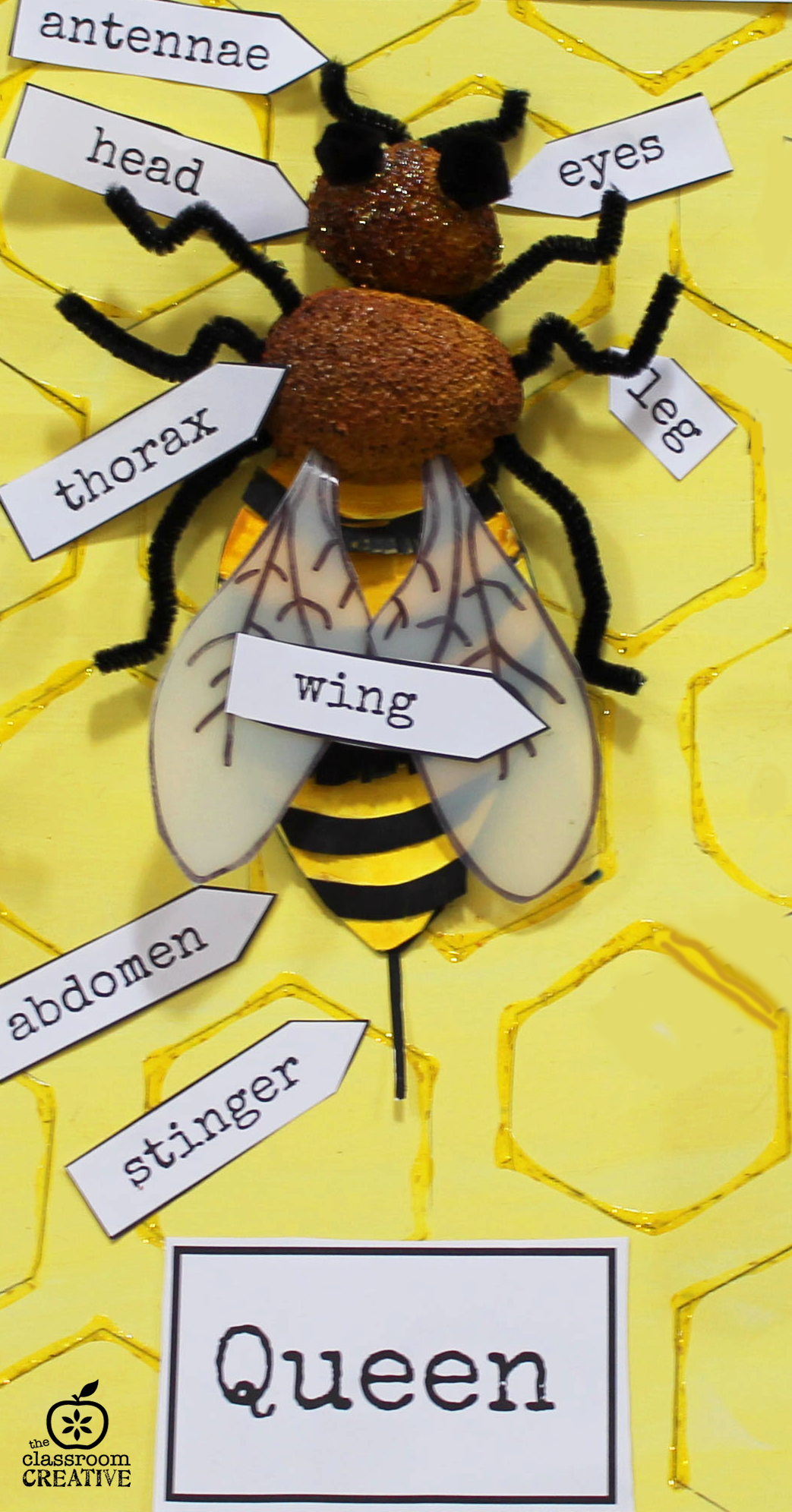Bee Unit Craft And Activity