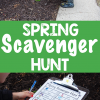 Spring Scavenger Hunt Ideas