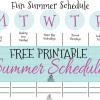 Summer Fun schedule