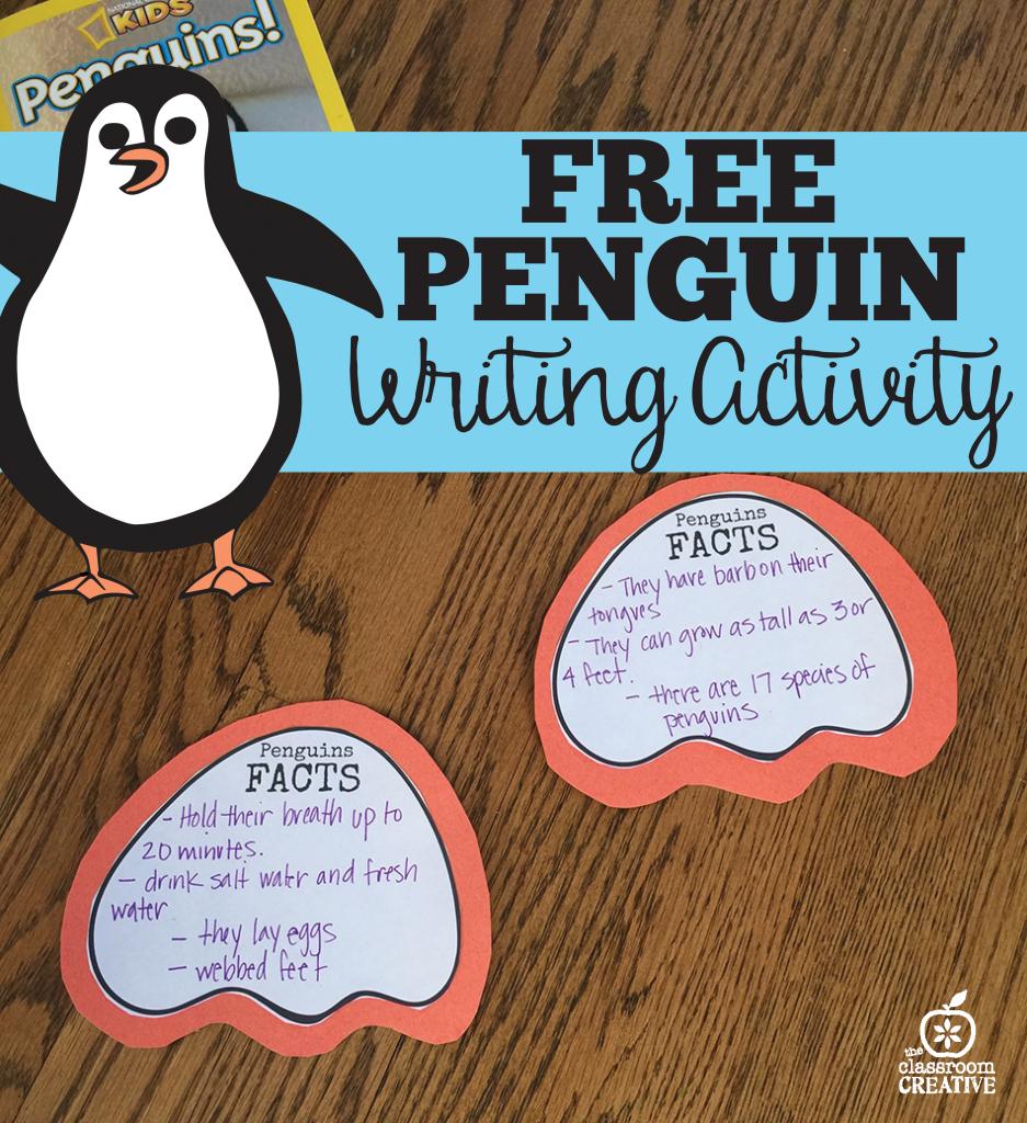 essay about penguins