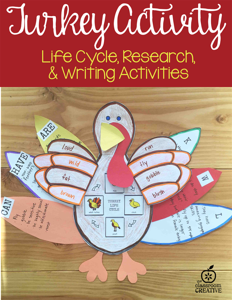 turkey science craft