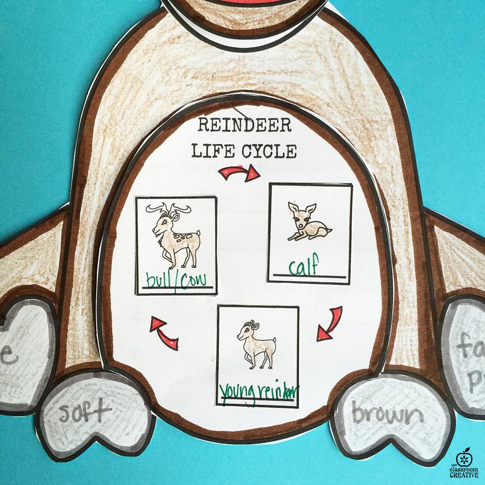 Reindeer Activities for Kindergarten, First Grade, and Second Grade