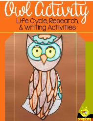 owl-activity