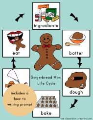 Gingerbread Life Cycle